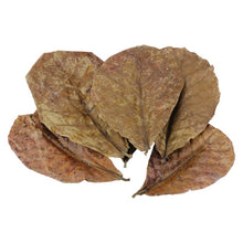 Load image into Gallery viewer, 10Pcs/Pack Natural Almond Leaf