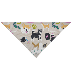 Baduko and Friends Bandana
