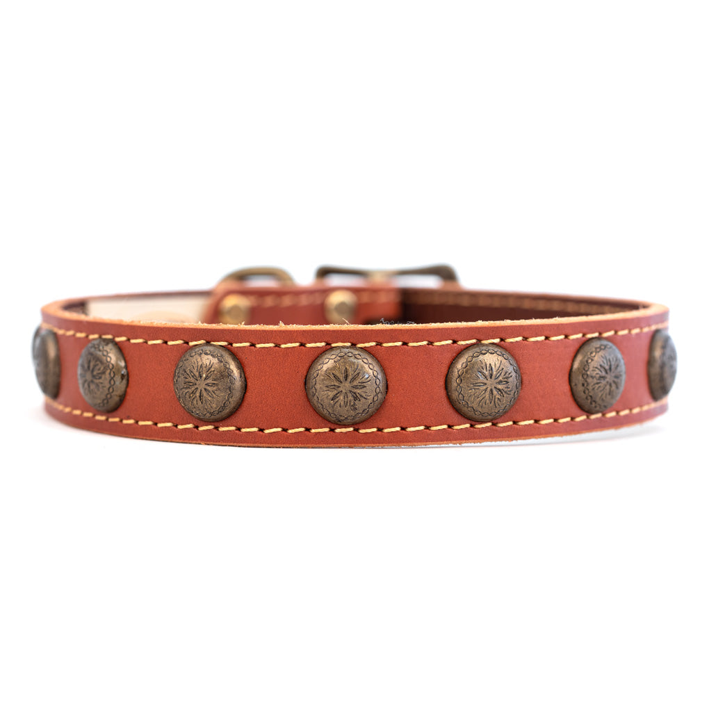 Lake Country Sunburst Collar Tan