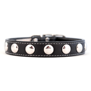 Silver Studded Collar Black