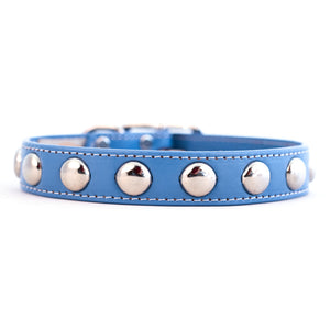 Silver Studded Collar Royal Blue