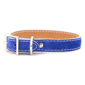 Saratoga Suede collar in blue