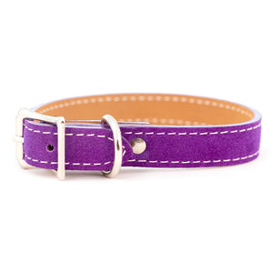 Saratoga Suede collar in purple