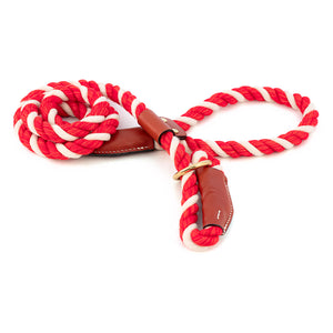 Cotton Rope Slip Leash with Leather Accents