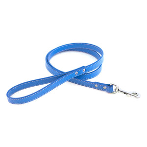 Dover Court Leash in royal blue