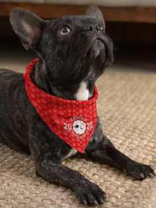 Baduko Athletics Bandana