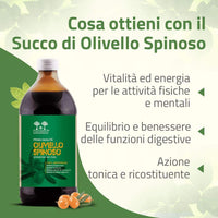 a cosa serve il succo di olivello spinoso