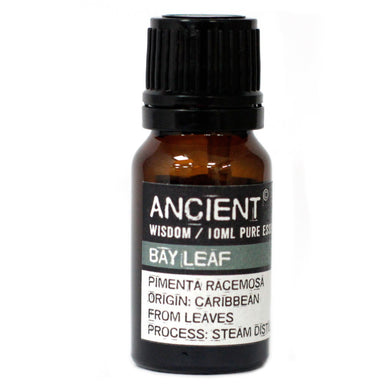 Bay Leaf Essential Oil - 10ml - Elsie & Evie