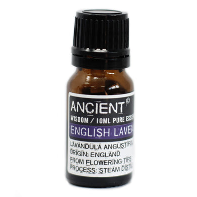 English Lavender Essential Oil - 10ml - Elsie & Evie