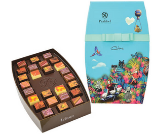 Iconic Cubes Giftbox