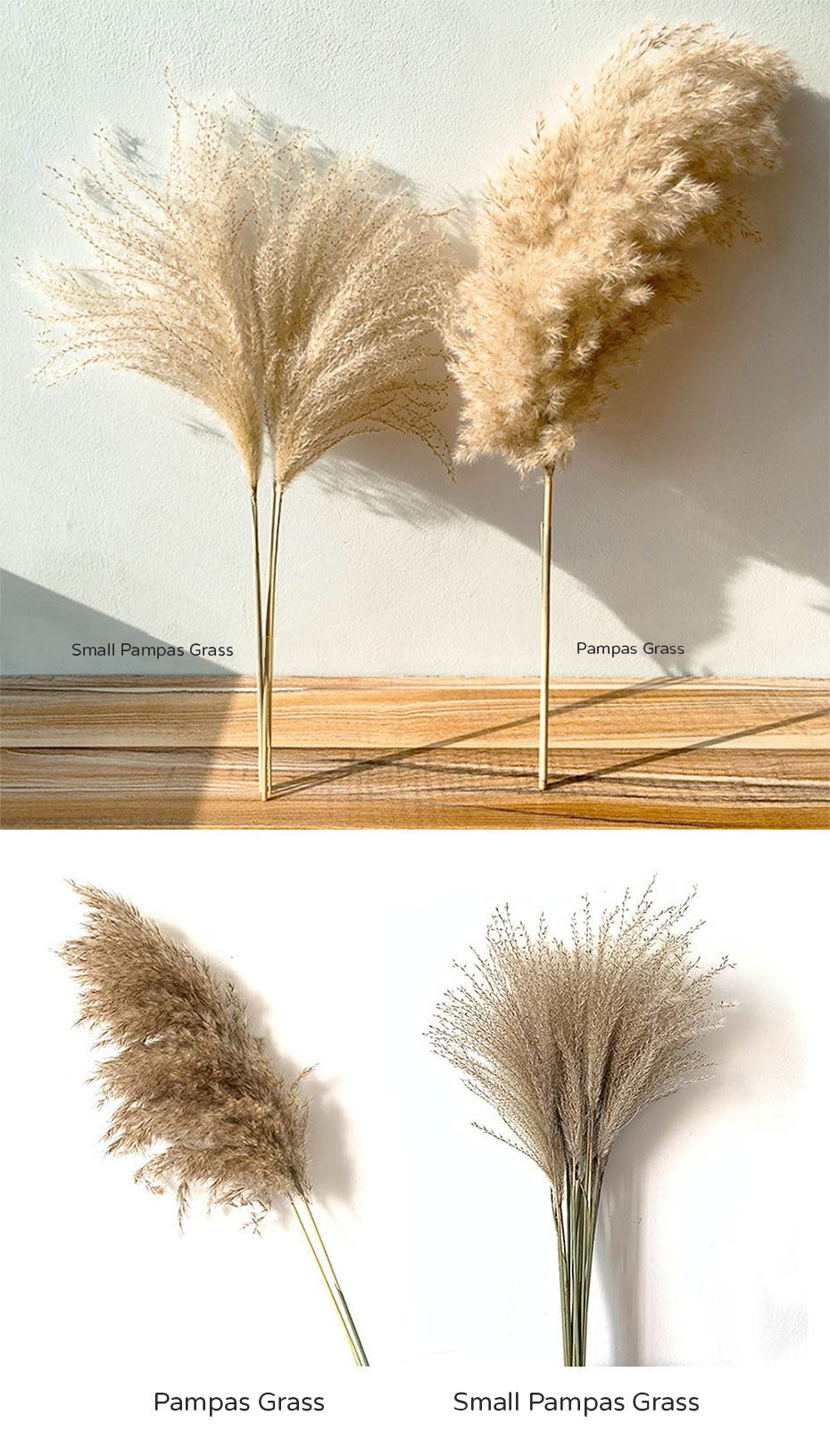 Real Dried Pampas Grass Bouquet Bohemian Decor Natural Dried Fluffy Plants For Dining Room Kitchen Decoration Living Room Boho Style Home Interior Design
