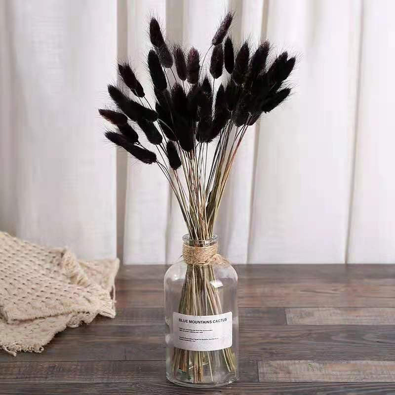White Pampas Grass Bouquet Home Decor Real Dried Plants Natural Floral Bouquet For Living Room Dining Room Bedroom Celebration Event Decoration Pack of 15Pcs