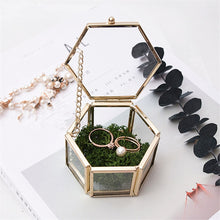 Load image into Gallery viewer, Nordic Style Geometric Polygon Transparent Gold And Glass Jewelry Storage Box Desktop Display Succulents Cactus Plant Pot
