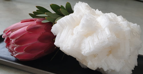 ESC-1 Edible Salt Crystal