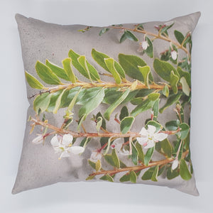 FCC-3 Buchu Cushion Cover