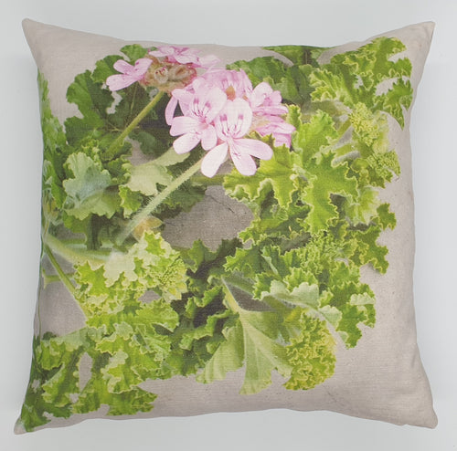 FCC-7 Cushion Cover Rose pelargonium