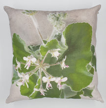 Load image into Gallery viewer, FCC-8 Mint pelargonium Cushion Cover