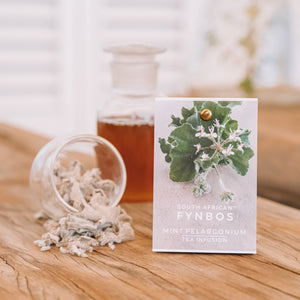 Tea Infusion - Mint pelargonium