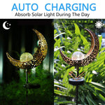 AMWGIMI Garden Solar Light Outdoor Decorations