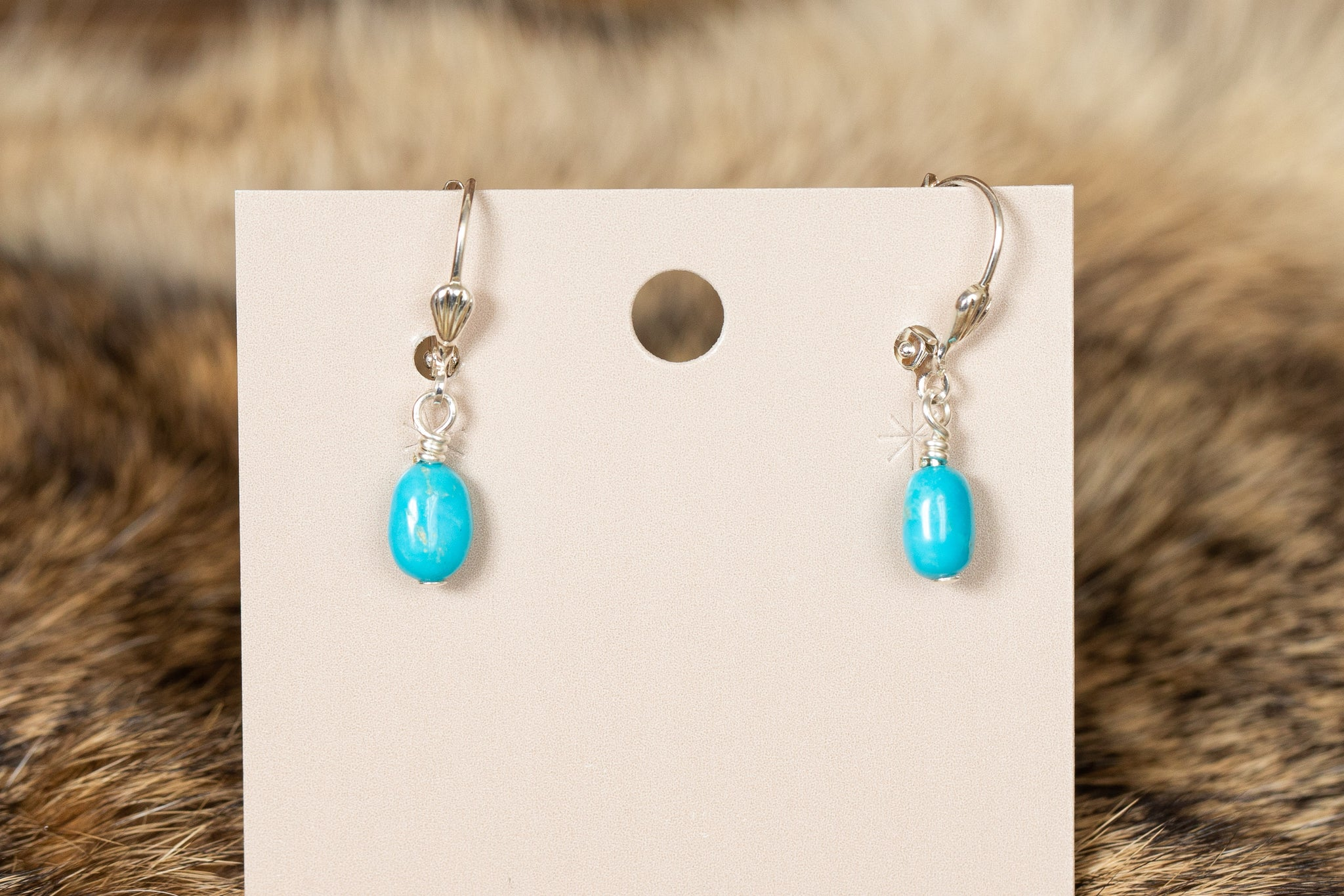 Turquoise Stone Earrings with Clip