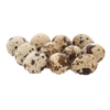 Quail Eggs (15pcs) - Market Boy