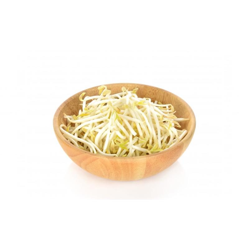 Bean Sprout (1pkt - 300g) | Fresh Chicken, Pork, Seafood, Vegetables and More
