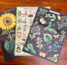 Load image into Gallery viewer, Sunflowers Vintage Wall Chart