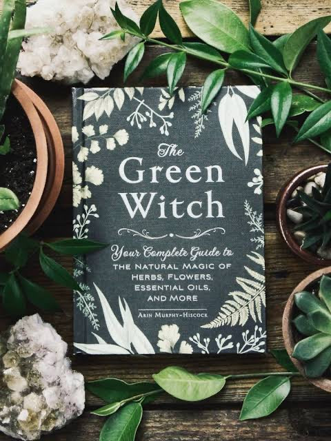 Green Witch: YOUR COMPLETE GUIDE TO THE NATURAL MAGIC OF HERBS, FLOWERS,ESSENTIAL OILS, AND MORE by Arin Murphy Hiscock