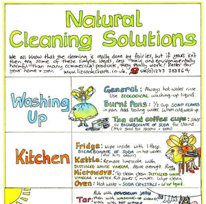 Liz Cook Chart Natural Cleaning