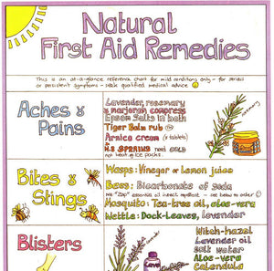 Liz Cook Natural First Aid
