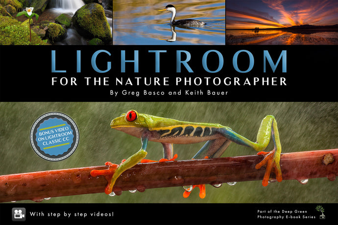 Lightroom for the Nature Photographer