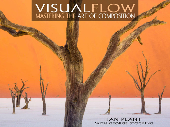 Visual Flow: Mastering the Art of Composition