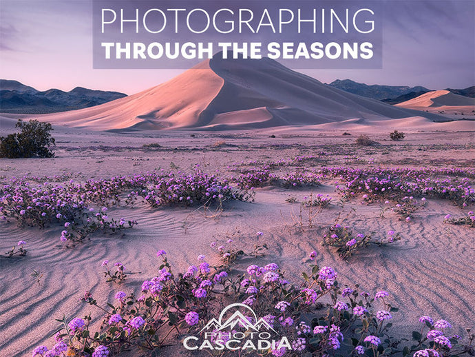 Photographing Through the Seasons