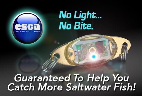 esca lure light | nuts and bolts of fishing & boating, Reel Combo