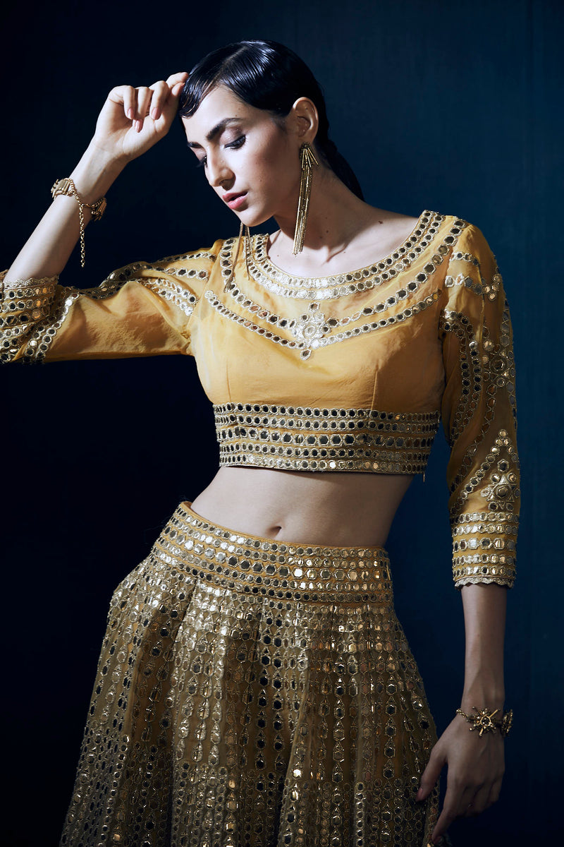 Mustard and gold heavy embroidery lehenga