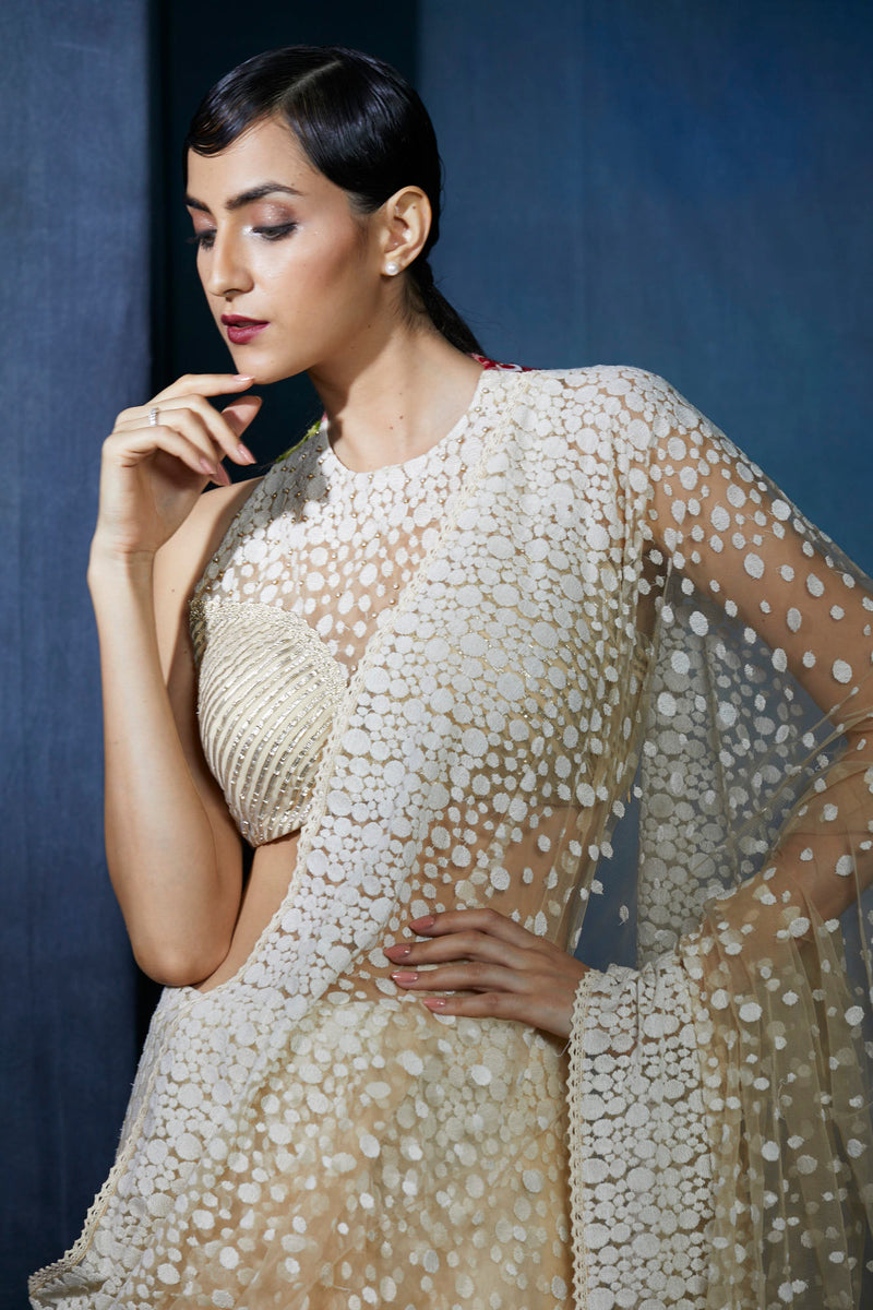Champagne beige embroidered saree