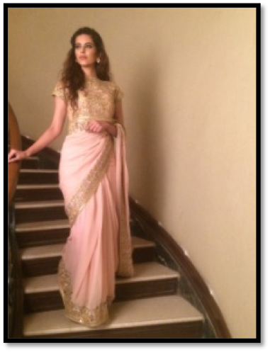 Blush pink saree with gold embroidery blouse