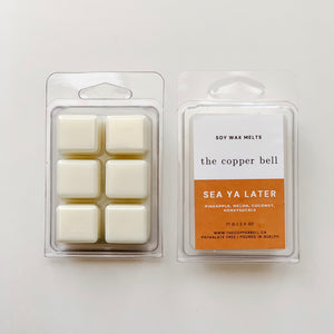 scented soy wax melts named sea ya later. the scent is pineapple, melon, coconut and honeysuckle