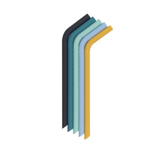 We Might Be Tiny - Bendie Straws (Set of 5 with cleaning brush) - Sun and Sky