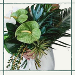 Green Anthurium Accent Package