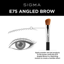 Load image into Gallery viewer, E75 Angled Brow Brush