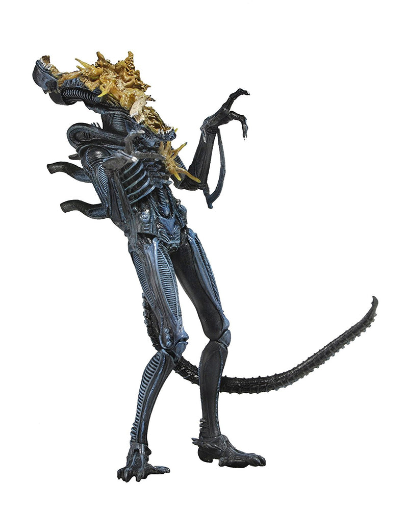 "Aliens Series 12 Brown Xenomorph Warrior Battle Damaged 7"" Action Figure"