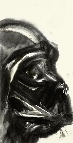 Star Wars Darth Vader Giclee on Paper by Yoshitaka Amano