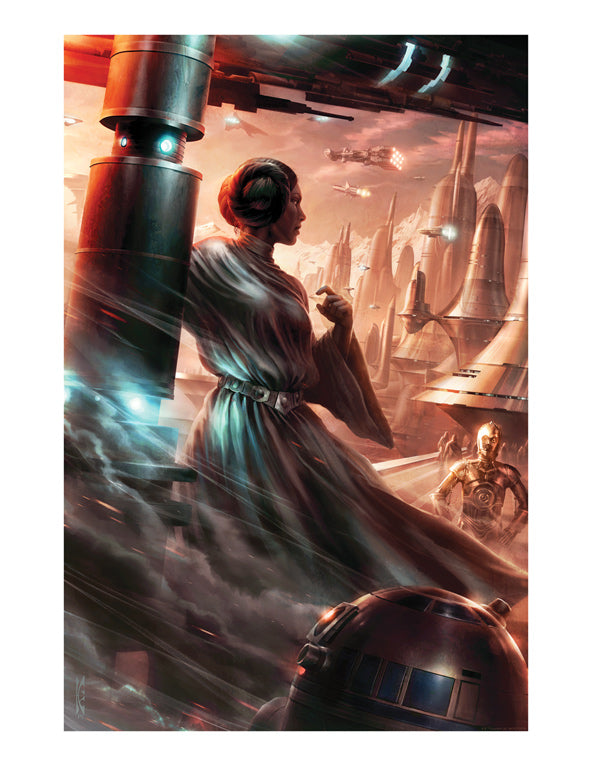 "Star Wars Princess Leia ""Last Look Back"" Giclee on Paper by Raymond Swanland"