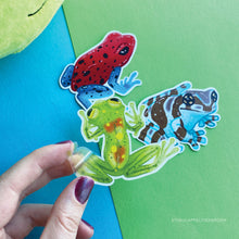 Load image into Gallery viewer, Realistic Frog | Frog friends sticker set