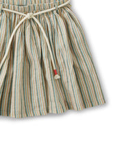 Load image into Gallery viewer, Sparkle Stripe Tie Twirl Skirt