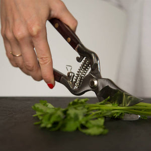 Kitchen Garden Shears - Provisions, LLC