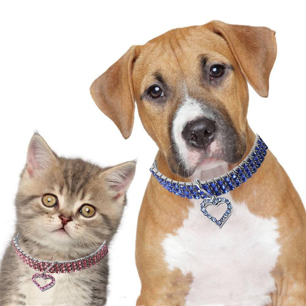 Gold dog Chain - Crystal Heart Pets Collar