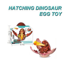 Load image into Gallery viewer, Hatching Dinosaur Egg Toy