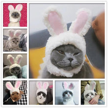 Load image into Gallery viewer, Cat Bunny Ears🔥